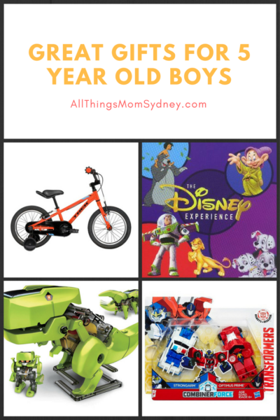 gifts for 5 year old boys presents for the big little boys